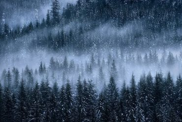 Winter is Coming: Here are some tips on what and where to shoot when it gets cold