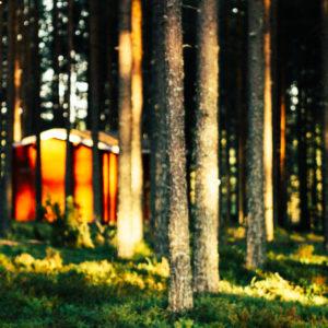 Hütte in finnischem Wald