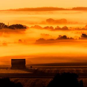 Sonnenaufgang an der Donau 4