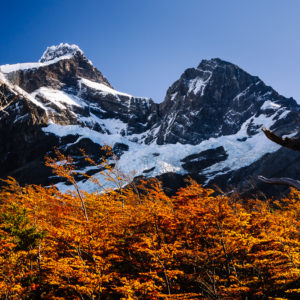 Im Torres del Paine 5